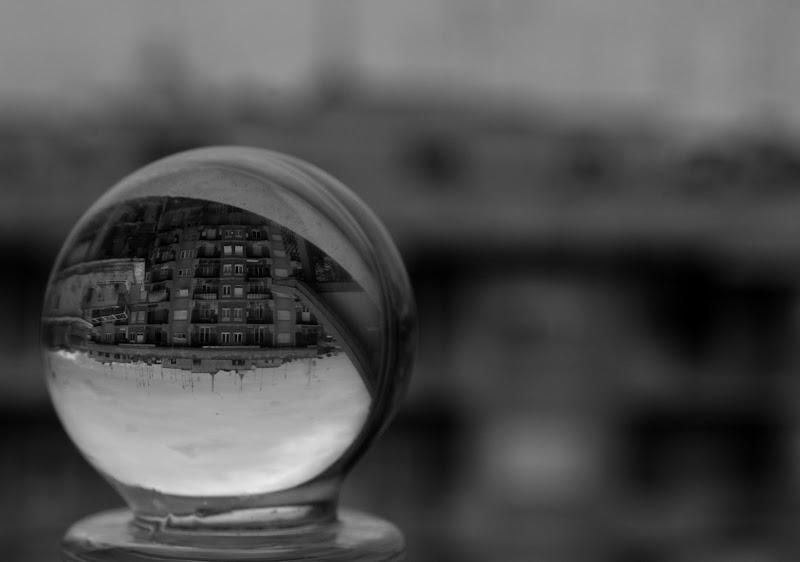 The world inside. di francesca bolla