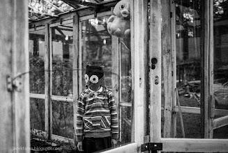 Photo: cracow wedding, terrorist, children, kid;