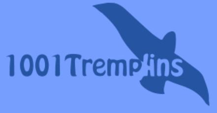 1001tremplins