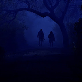 HUMAN SILHOUETTES by Vijay Singh Chandel - People Street & Candids ( fog, silhouette, street, forest, photography, human, mist )