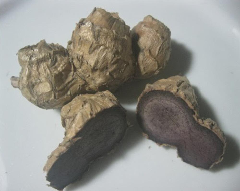 Bùa ngải khô được sử dụng trong quá trình luyện bùa