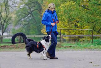Photo: Fuß-gehen mit Leine