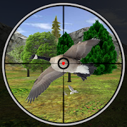 Forest Taloor Hunting Season 2017 1.0 APK MOD