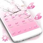 Pink Cherry Theme icon