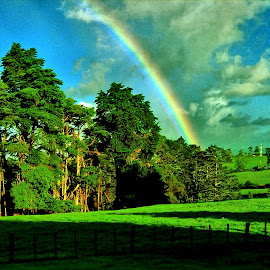 by Chris Fainsan - Landscapes Forests ( rainbow, mountain, grass, hills )