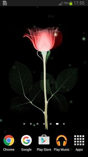 X光射线花朵动态壁纸