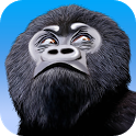 Monkey War 3D icon