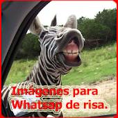 Imagenes para Whatsap de risa
