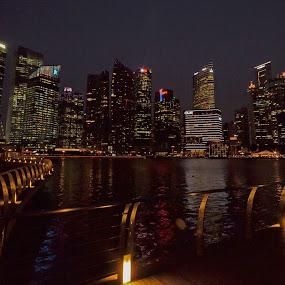 Singapore at night by Thomas Nicola - City,  Street & Park  Night (  )
