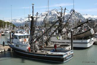 Photo: Hafen von Valdez
