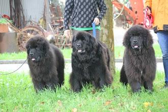 Photo: Chagai, Mama Lesley, Coraly