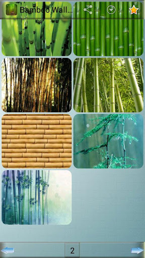 免費下載娛樂APP|竹壁纸。 app開箱文|APP開箱王