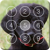 Cute Black Labrador Puppies Screen Lock
