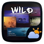 Wild GO Weather Widget Theme