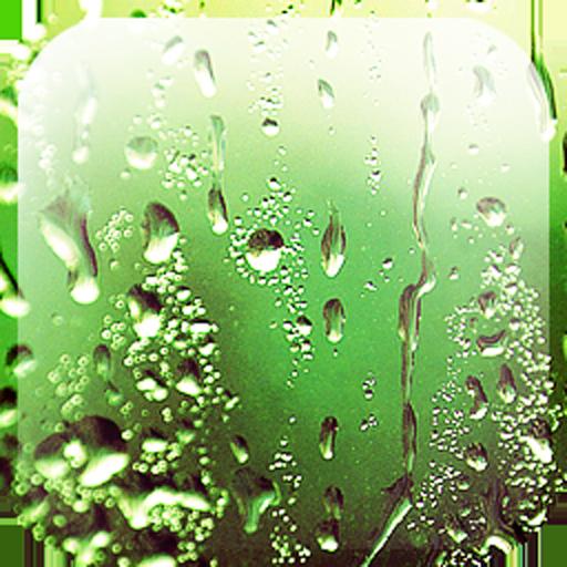 Rain Appling Live Wallpaper