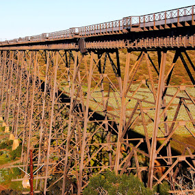 Rail bridge engineering by Ned Kelly - Buildings & Architecture Bridges & Suspended Structures ( tressel, railroad tracks, engine, railroad, train, bridge,  )