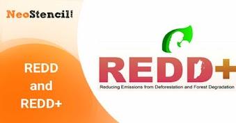 REDD and REDD+