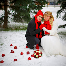 Wedding photographer Aleksandra Fitisova (Fitisova). Photo of 15.12.2013