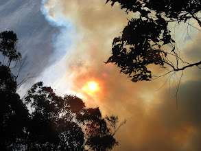 Photo: Bushfire, this really isn't good