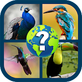 Birds Quiz Android APK Download Free By AbracaDabra Software Solutions Pvt. Ltd.