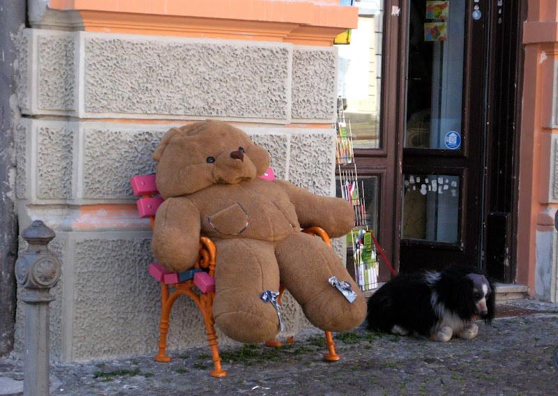accidia dell'orso di aeglos