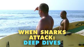 When Sharks Attack: Deep Dives thumbnail