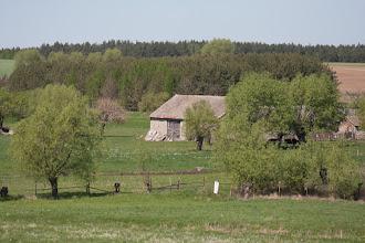 Photo: Dzierzbia do strony Porytego