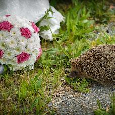 Wedding photographer Evgeniy Amelin (AmFoto). Photo of 01.03.2017