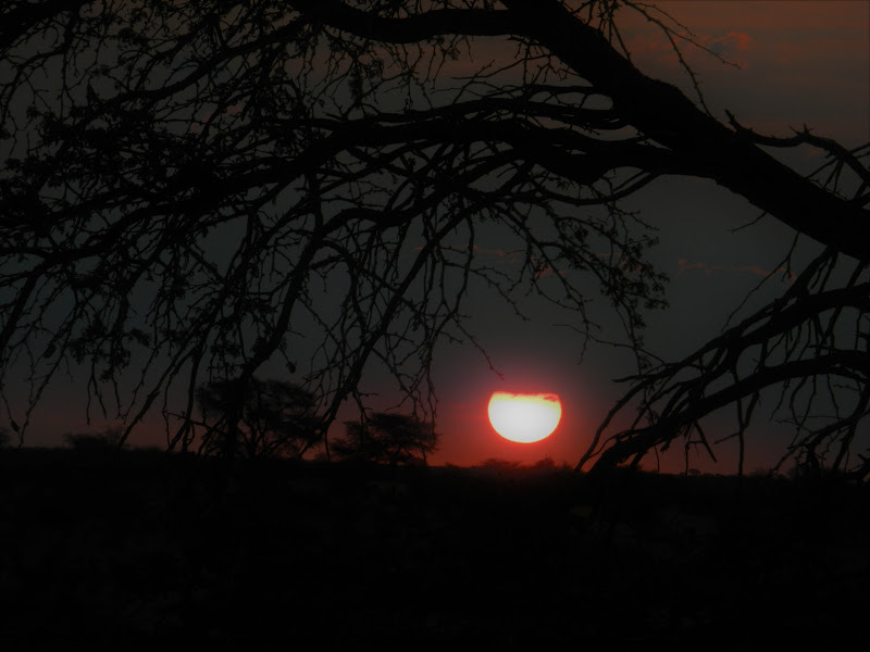 Notte in Namibia di Balmida
