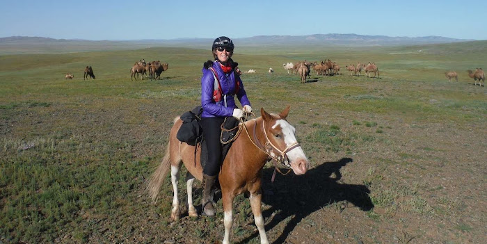 Riding horses in Mongolia during the Mongol Derby with Camels | Krys Kolumbus Travel