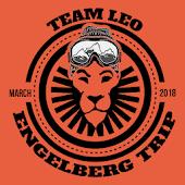 Tải Game Team Leo