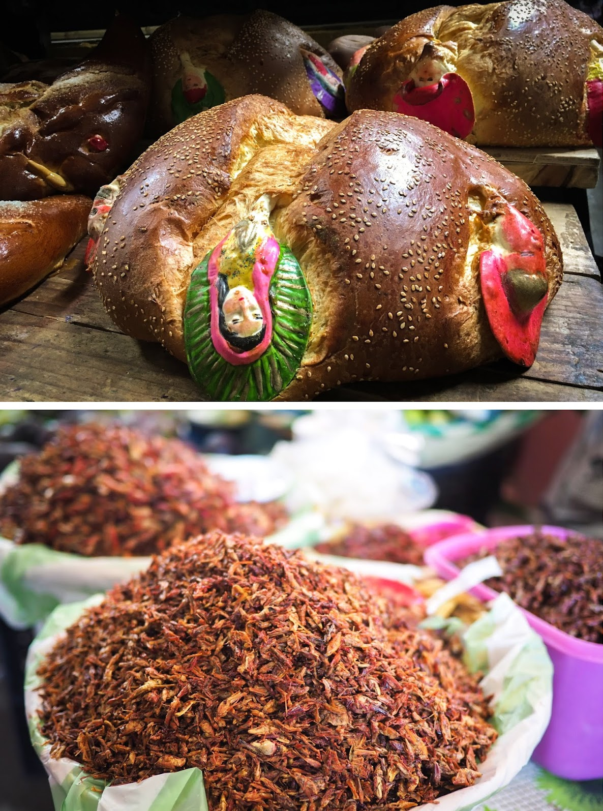Pan de Muerto and fried crickets found at a market in Oaxaca
