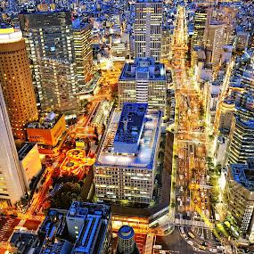 Brightness in Osaka by Hiro Ytwo - City,  Street & Park  Vistas ( osaka, night, light, city )