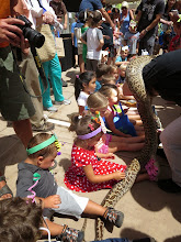 Photo: Juvenile python for the kids