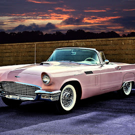I had fun, fun, fun... by JEFFREY LORBER - Transportation Automobiles ( pink car, thunderbird, jeffrey lorber, rust 'n chrome, pink, car, ford, lorberphopto )