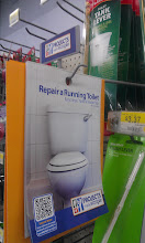 """Photo: I had to pick up the toilet flushy thingie and found out it is called the Flush Lever. I also found this pamplet made by Walmart """"Projects Made Simple"""" - very handy!"""