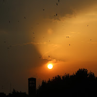 Verso il tramonto di