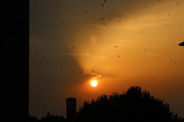 Verso il tramonto di Joonie94