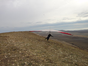 Photo: жив, цел, орел