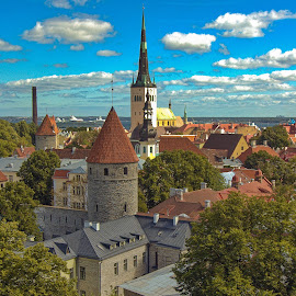 Old World City Of Tallinn by Garry Dosa - City,  Street & Park  Historic Districts ( estonia, city, old, buildings, medieval, tallin, travel, spires, rooftop, summer, architecture )