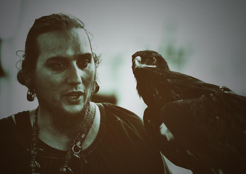 Il Falconiere di Matteo Faliero