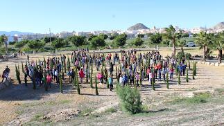 Plantación de 150 cipreses en el Parque de la Rambla por los alumnos de los colegios.