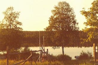 Foto: En stilla sommarkväll vid sjön Ajankin järvi.