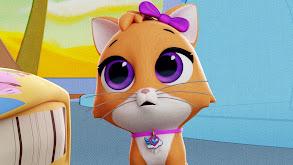 Mia the Kitty thumbnail