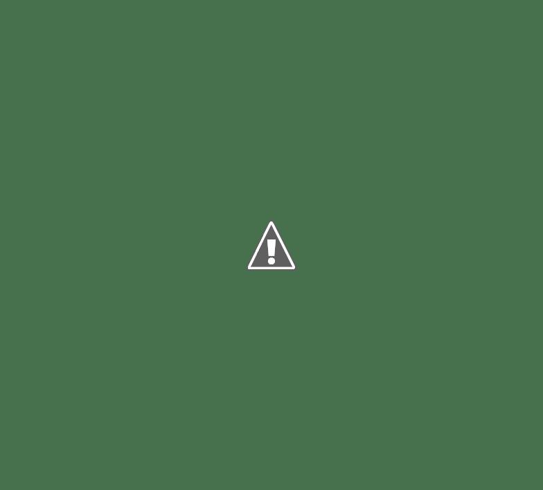 ROTARY DIFUNDE UN CENSO PARA PERSONAS QUE SUFRIERON POLIO