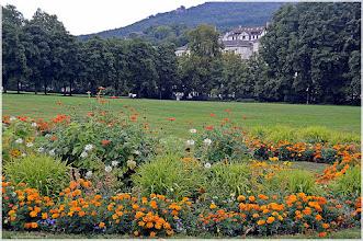 Photo: Baden-baden.La Selva Negra . Alemania http://www.viajesenfamilia.it/selva_negra.htm
