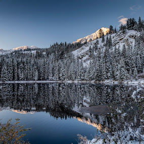 Silver Lake  by Brandon Montrone - Landscapes Mountains & Hills ( sunrise, mirror, reflection, nature, winter, scenic, trees, outdoor, mountain, lake water, snow, lake, landscape )