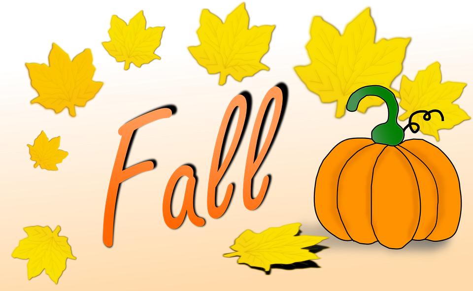 Pumpkin, Fall, Leaves, Autumn, ...
