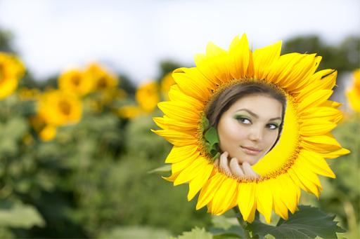 Sunflower Photo Frames Pro