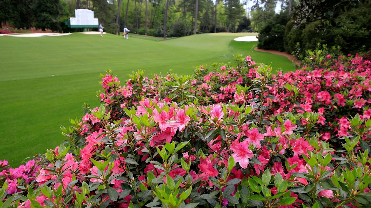 Watch Wednesday at the Masters live